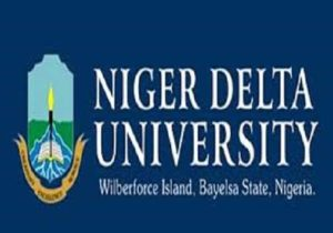 Niger Delta University Sandwich Degree Admission Form 2018/2019